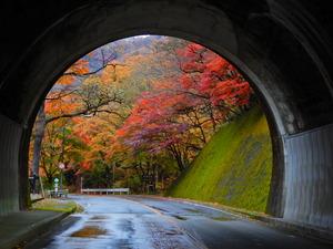 旧道の紅葉