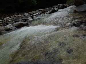 渓流の流れ