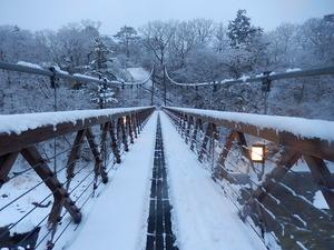 2015.1.30の雪