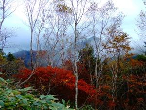 ハンタ−マウンテン山頂遊歩道