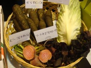 カラフル洋野菜