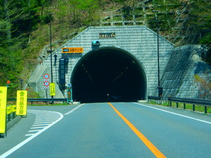 新緑の旧道