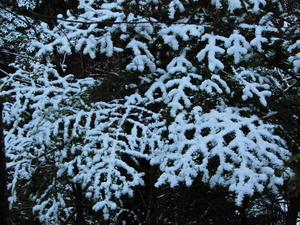 お彼岸の雪景色