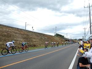 全日本自転車競技選手権大会ロードレース