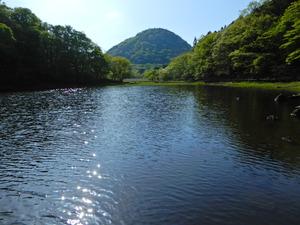 新緑の大沼