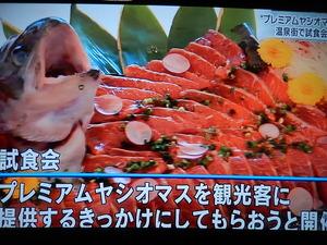 NHKニュースで