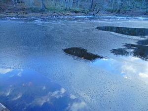 初冬の大沼