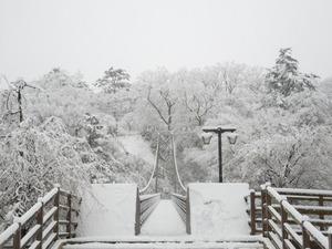 雪の七ツ岩つり橋