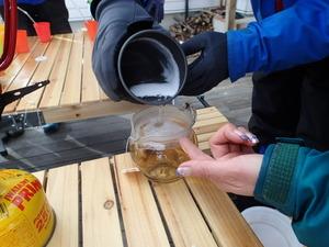 樹液で紅茶をいれる