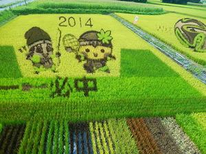 田んぼアート2014
