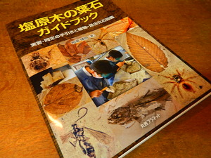 木の葉石の本