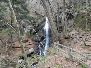 地上から見る留春の滝