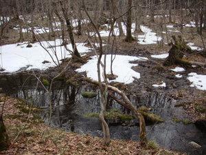 雪がまだ残る大沼