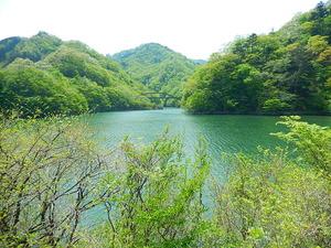 新緑の塩原ダム湖