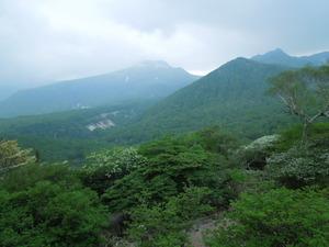 那須岳とゴヨウツツジ