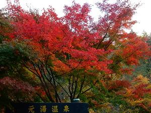 新元線2014.10.27