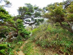 ガラリと風景が変わる白笹山