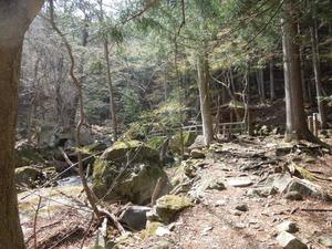 林の中の不動の湯