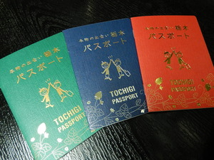 本物の出会いパスポート