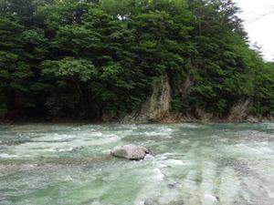 きれいな川底