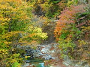 四季の里橋2015.10.31