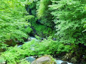 仁三郎の滝周辺