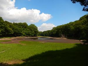 一雨降った後の大沼
