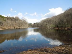 早春の大沼