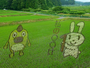 田んぼアート