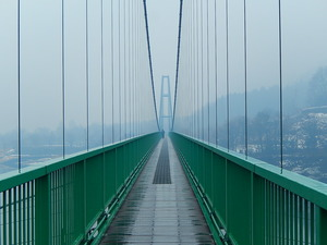 霧のもみじ谷大吊橋