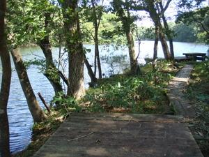 木道のすぐそばまで水が