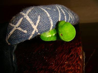 下駄の鼻緒にしがみつくアゲハの幼虫