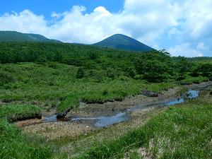 沼原湿原2016.6.27