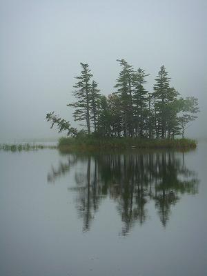知床五湖のうち二湖の風景