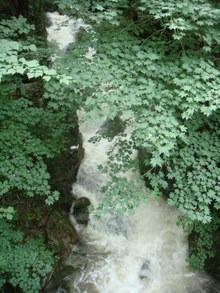 水量の増えた滝