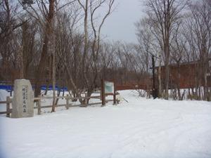 冬の平成の森