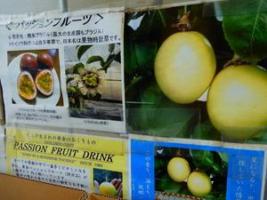 黄金パッションフルーツ