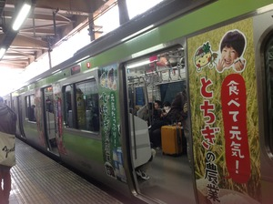 栃木ラッピング電車