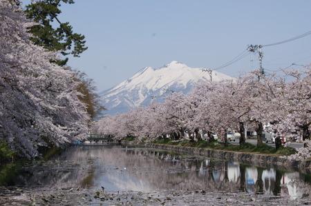 後ろにそびえてるのは別名津軽富士の「岩木山」