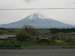 富士山のふもとに牧場がいっぱい