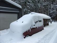 雪の中のムーブ