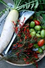 最後のトマト収穫