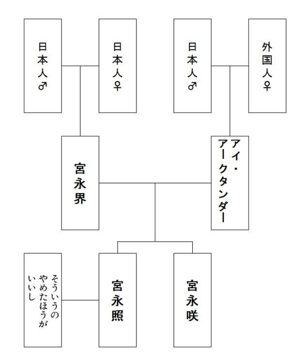 咲-Saki- 宮永姉妹 宮永咲 宮永照 クォーター 漫画