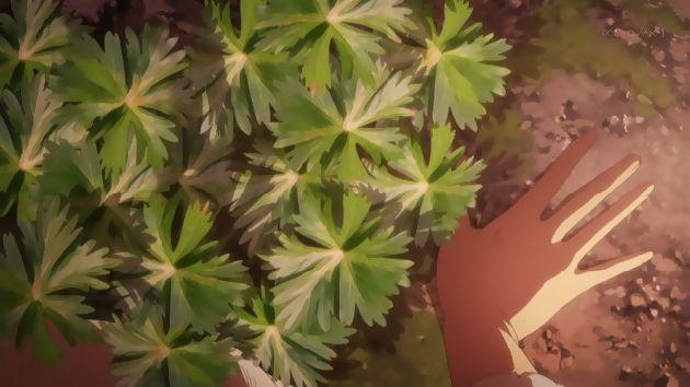 キノの旅 6話 (08)