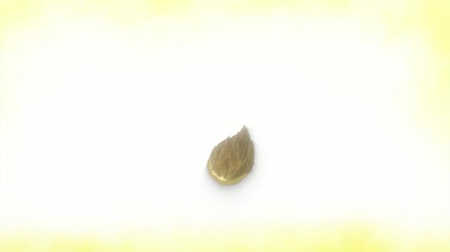 うどんの国の金色毛鞠 12話 感想