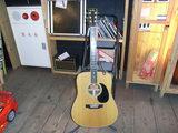 ブルーベルギター