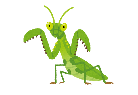 bug_kamakiri