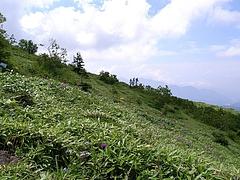 2008081003根子岳