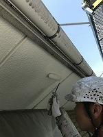 5-30軒天井(ニッペケンエースGII)上塗り1回目塗布