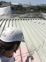 8-31屋根シリコンルーフ1回目塗装 (1)
